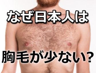 【悲報】日本人男性の胸毛が少ない理由が悲しすぎる・・